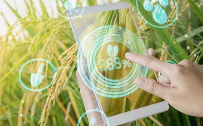 Agritech BIGDATA en el desplegament d'infraestructura per a la gestió de dades