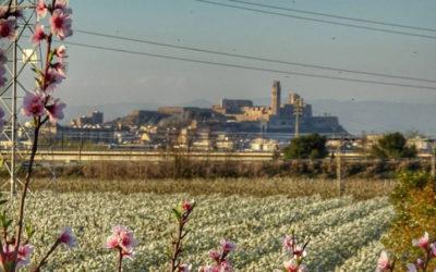 Turisme de Lleida aprova la contractació de la plataforma web i app mòbil TURISME 360º