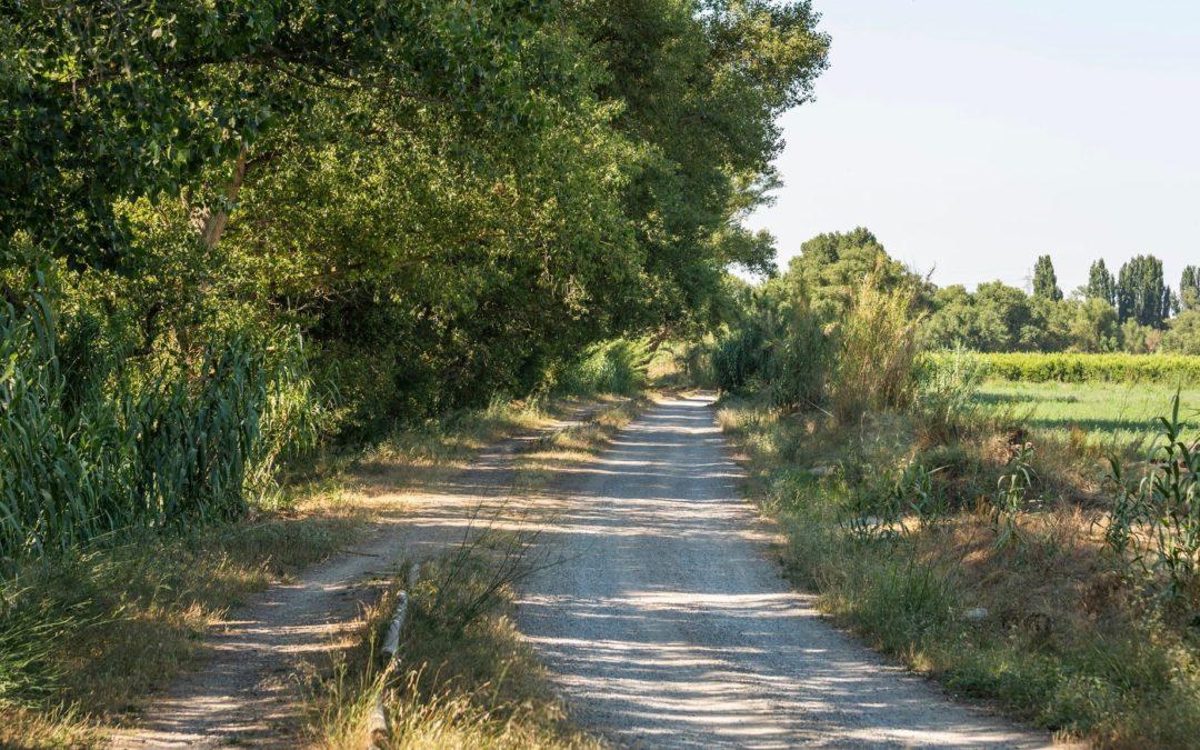 Turisme de Lleida impulsa la creació de dues rutes turístiques per la natura i l'Horta de Lleida en el marc del projecte Inno4Agro